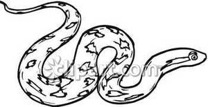 300x155 diamondback snake clipart