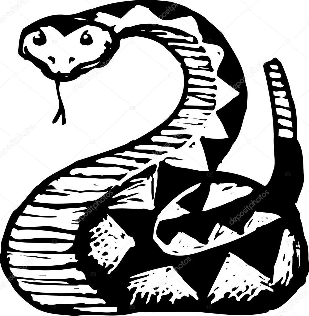 1000x1024 Illustration Of Rattlesnake Stock Vector Ronjoe