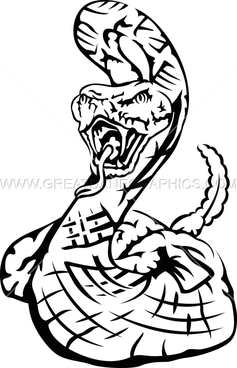 825x1278 Rattle Snake Production Ready Artwork For T Shirt Printing