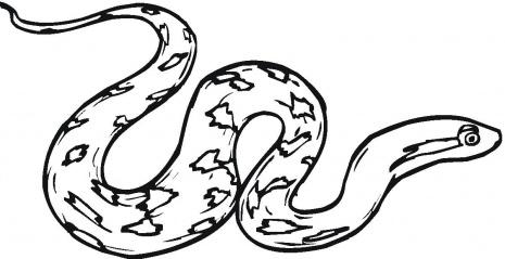465x239 Rattlesnake Clipart Ular