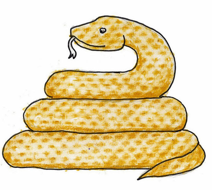 732x656 Coiled Snake