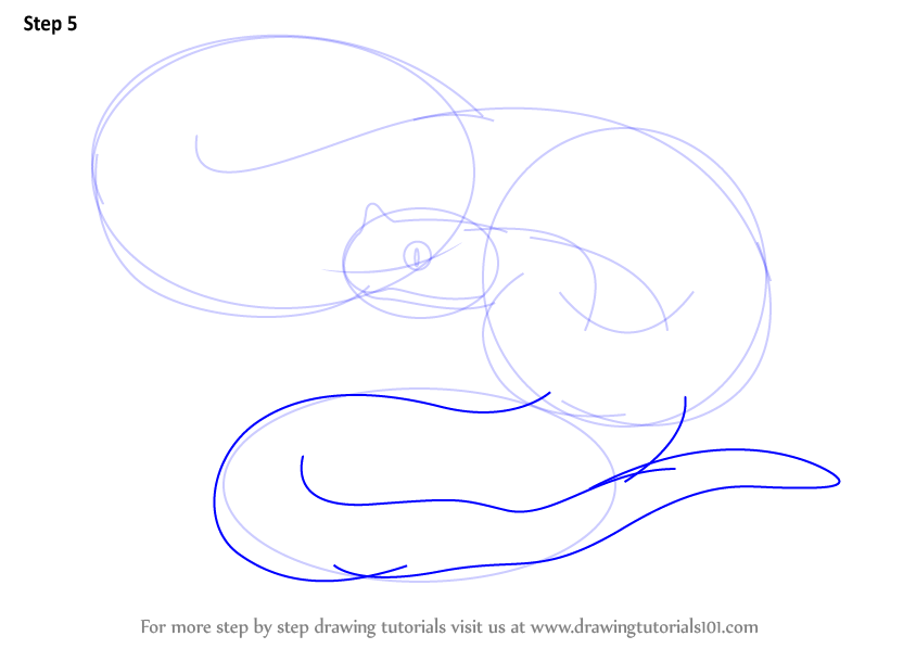 844x598 Learn How To Draw A Rattlesnake (Fishes) Step By Step Drawing