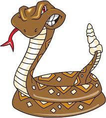Rattlesnake Drawings
