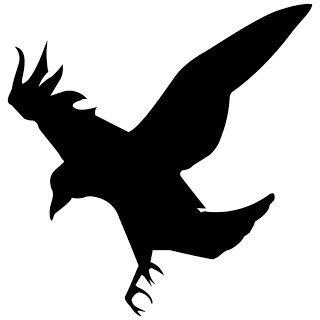 320x320 92 Best Raven Images Corporate Identity, Black