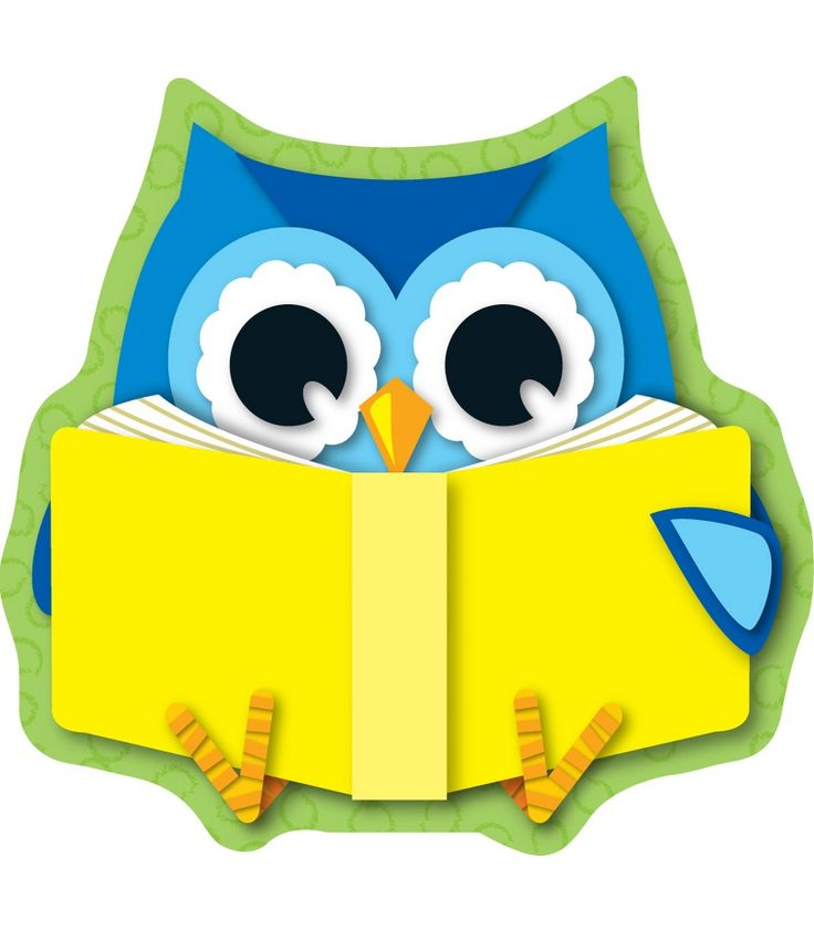 736x841 Owl Reading Clipart