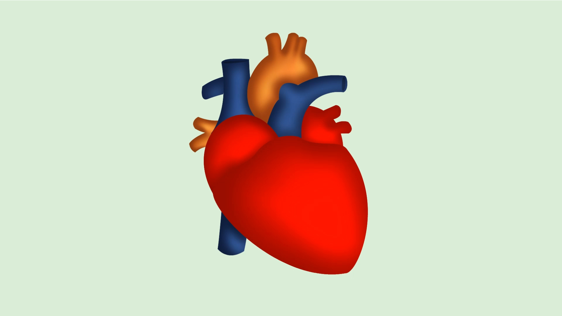 1920x1080 Real Human Heart Inside Heart Human Free Download Clip Art