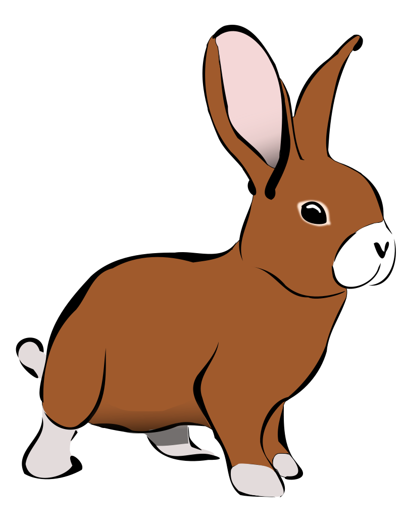 800x1041 Realistic Clipart Bunny