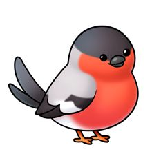 220x220 Love Birds Clip Art Love Birds Cartoon Bird Images Cartoon Bird