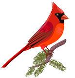 154x160 Cardinal Clipart Free