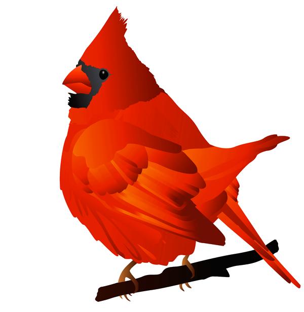 600x616 Cardinal Clipart Winter Cardinal