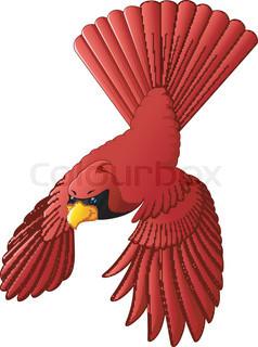 238x320 Red Cardinal Bird In Cartoon Style Stock Vector Colourbox