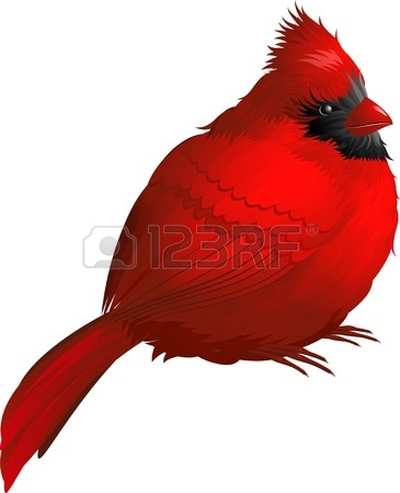 365x450 59,609 Red Bird Stock Vector Illustration And Royalty Free Red
