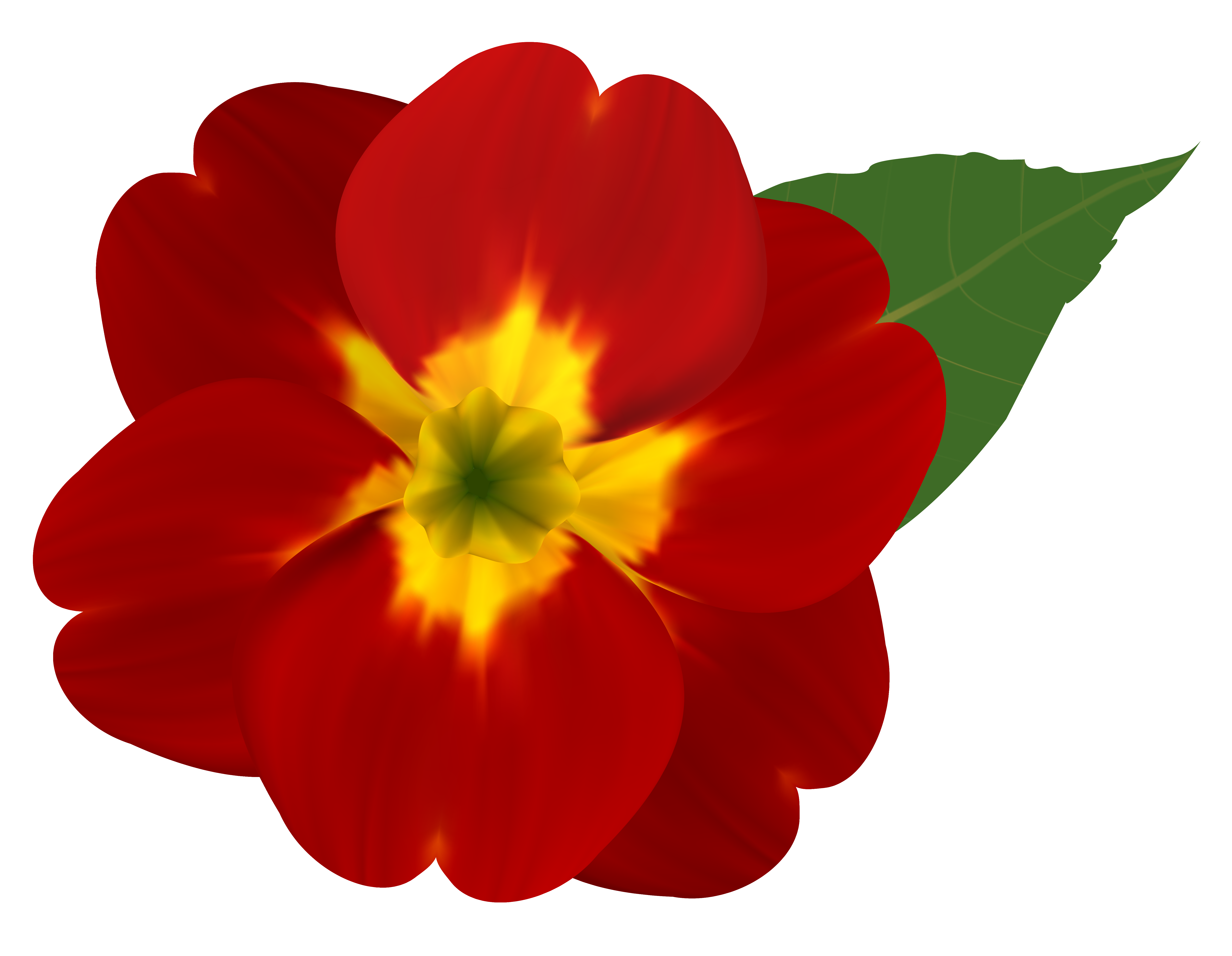 6260x4855 Red Flower Clipart Yellow Flower