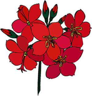 300x312 Red Flowers Clipart