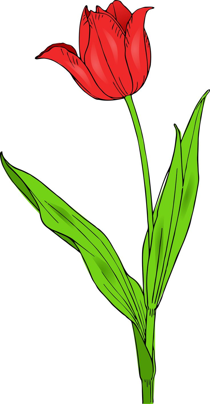 Red Flowers Clipart