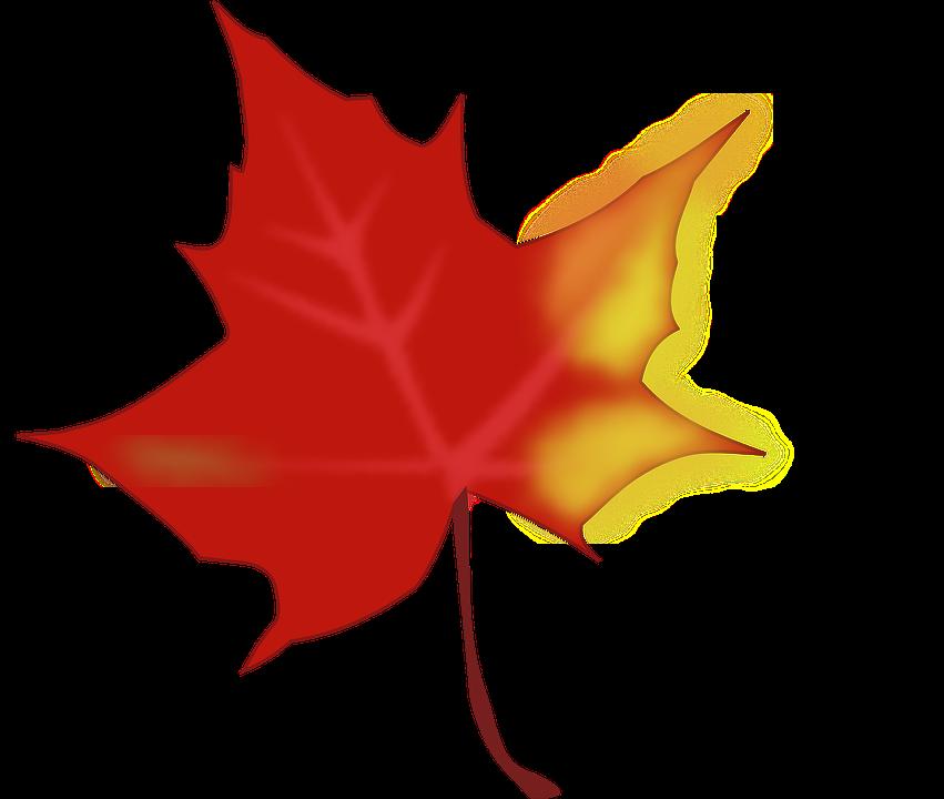 851x720 Maple Leaf Clipart Yellow Fall Leaf