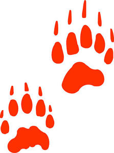 223x300 Badger Track Footprint Sticker Paw Print Decal Ebay