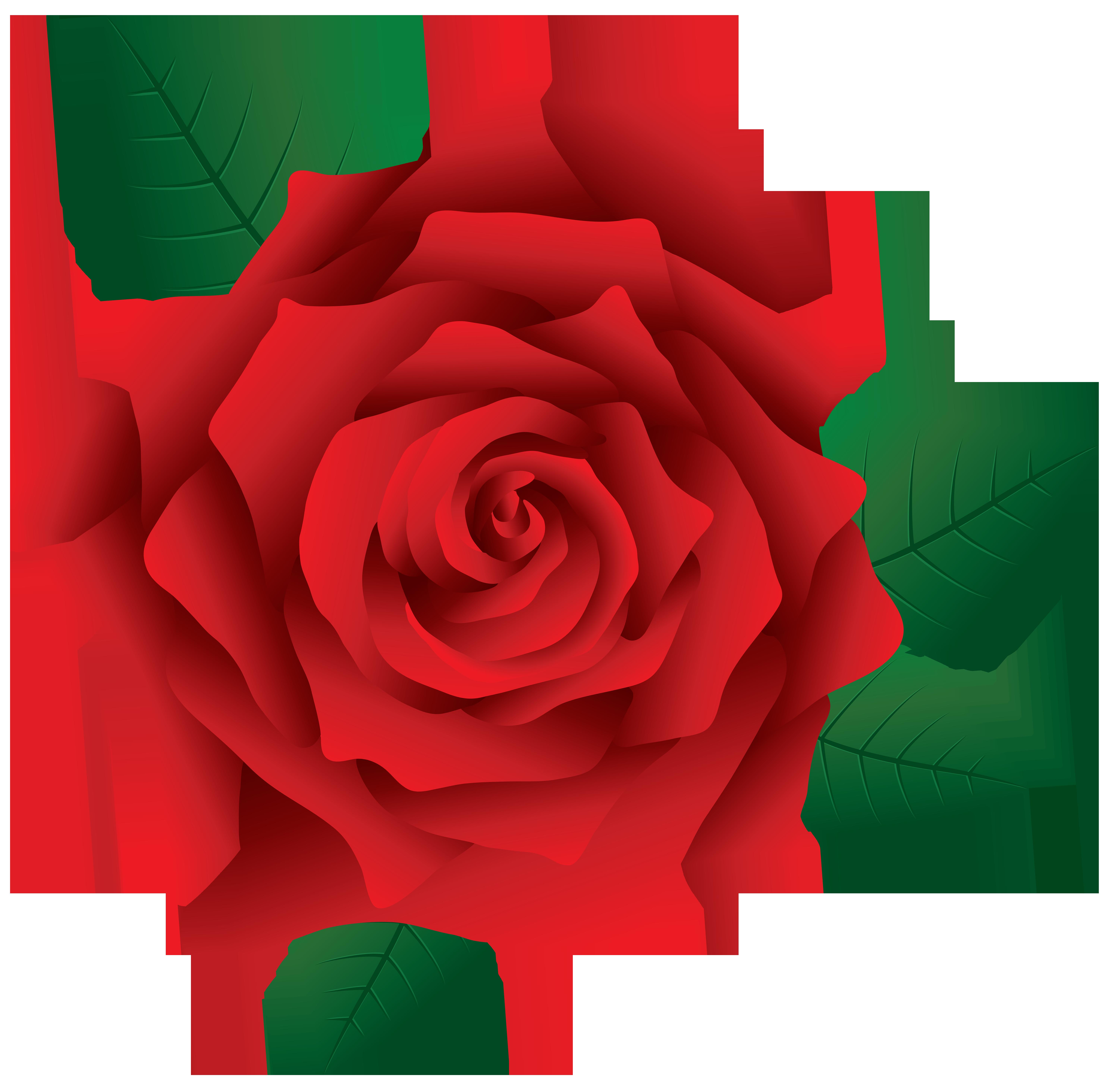 5953x5854 Top 84 Red Rose Clip Art