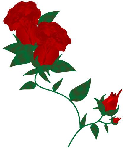 430x500 Red Rose Clip Art