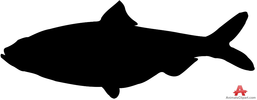 999x390 Clipart Red Fish