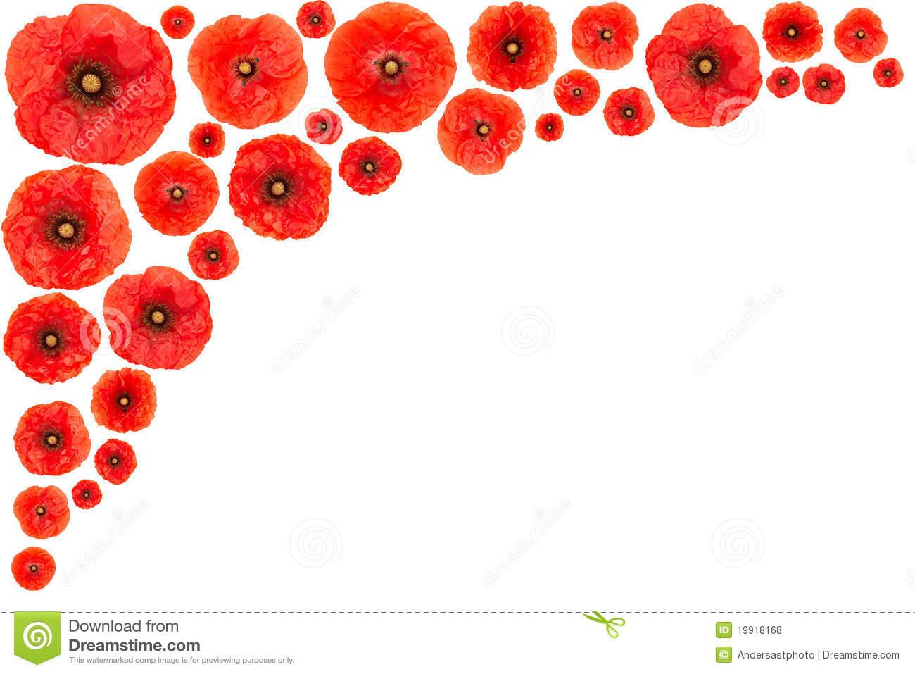 1300x957 Red Flower Border Clip Art Red Poppy Flower Frame Easy
