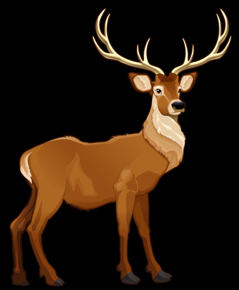 830x1006 Top 91 Reindeer Clip Art