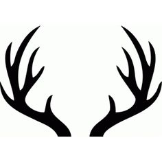 236x236 Wide Antlers Cliparts 275337