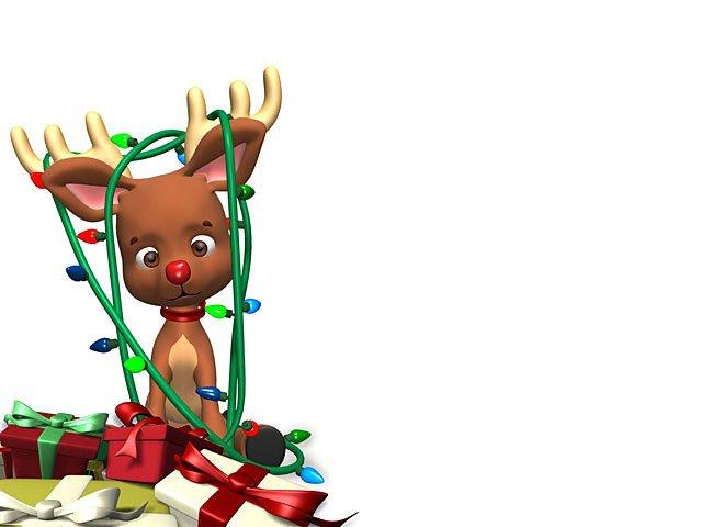 640x480 Reindeer