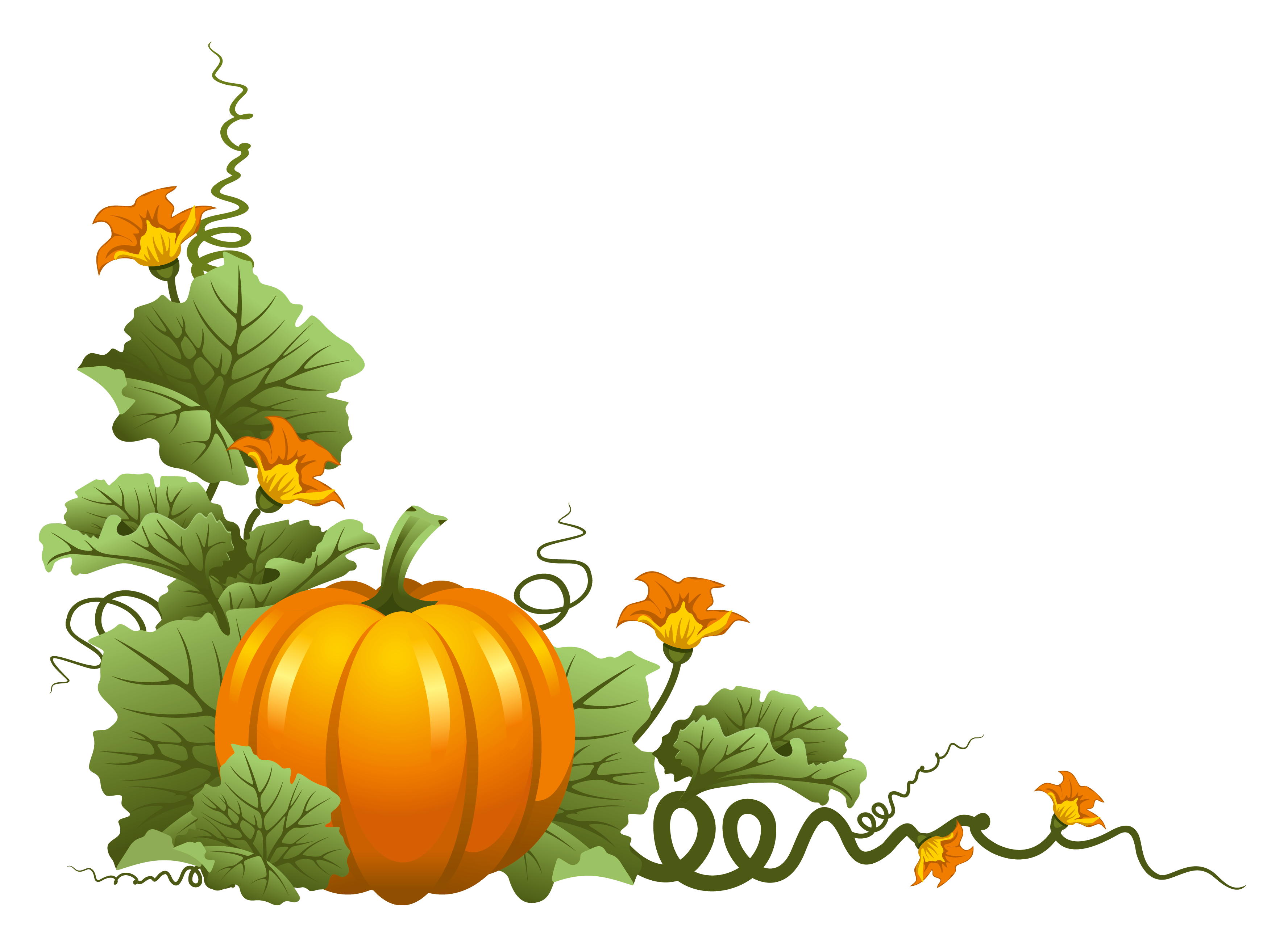 3554x2619 Leaf Thanksgiving Clip Art 101 Chronological Resume Templates Free