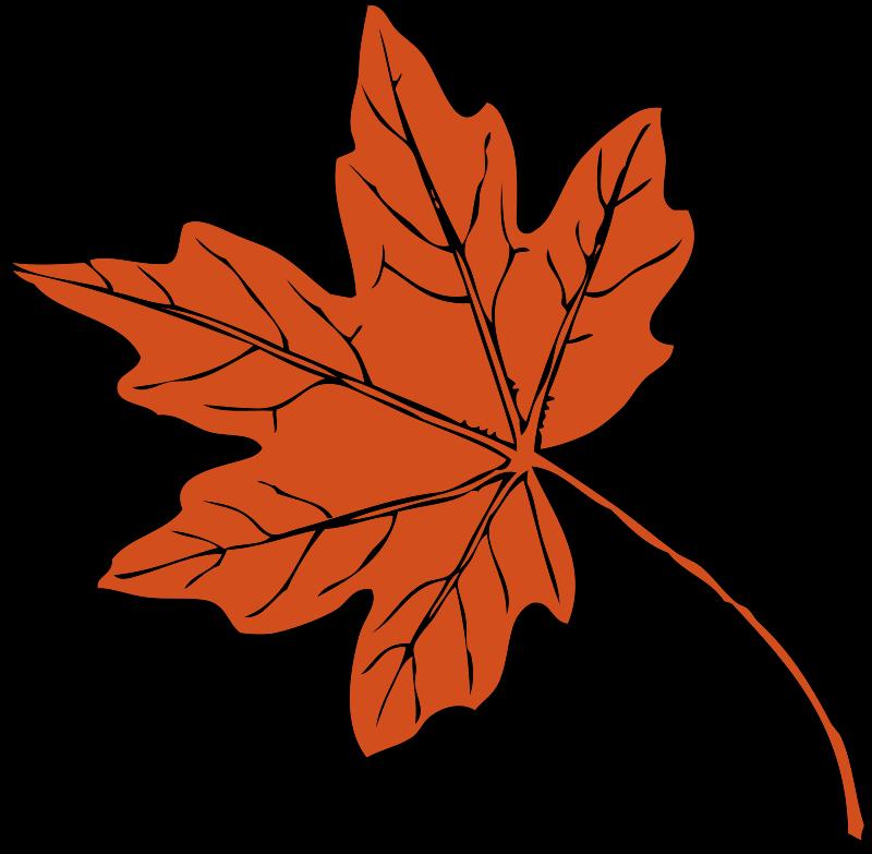 800x783 Thanksgiving Clip Art Free Christian