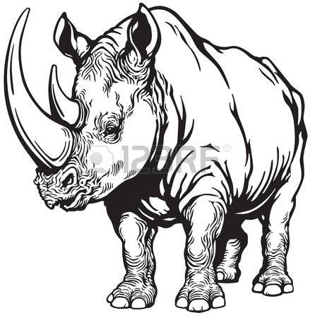 439x450 Charging Rhino Clipart Rhino Clipart Black And White
