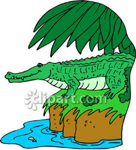 271x300 River crocodile clipart, explore pictures