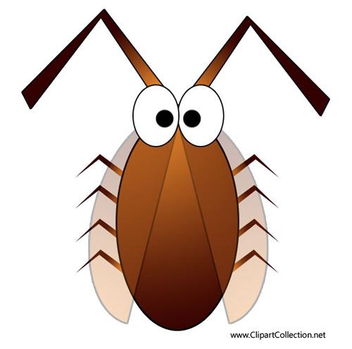 500x495 Cockroach clip art free clipart images 5