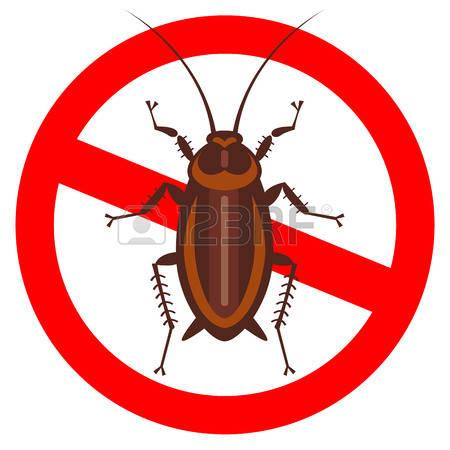 450x450 Top 73 Cockroach Clipart