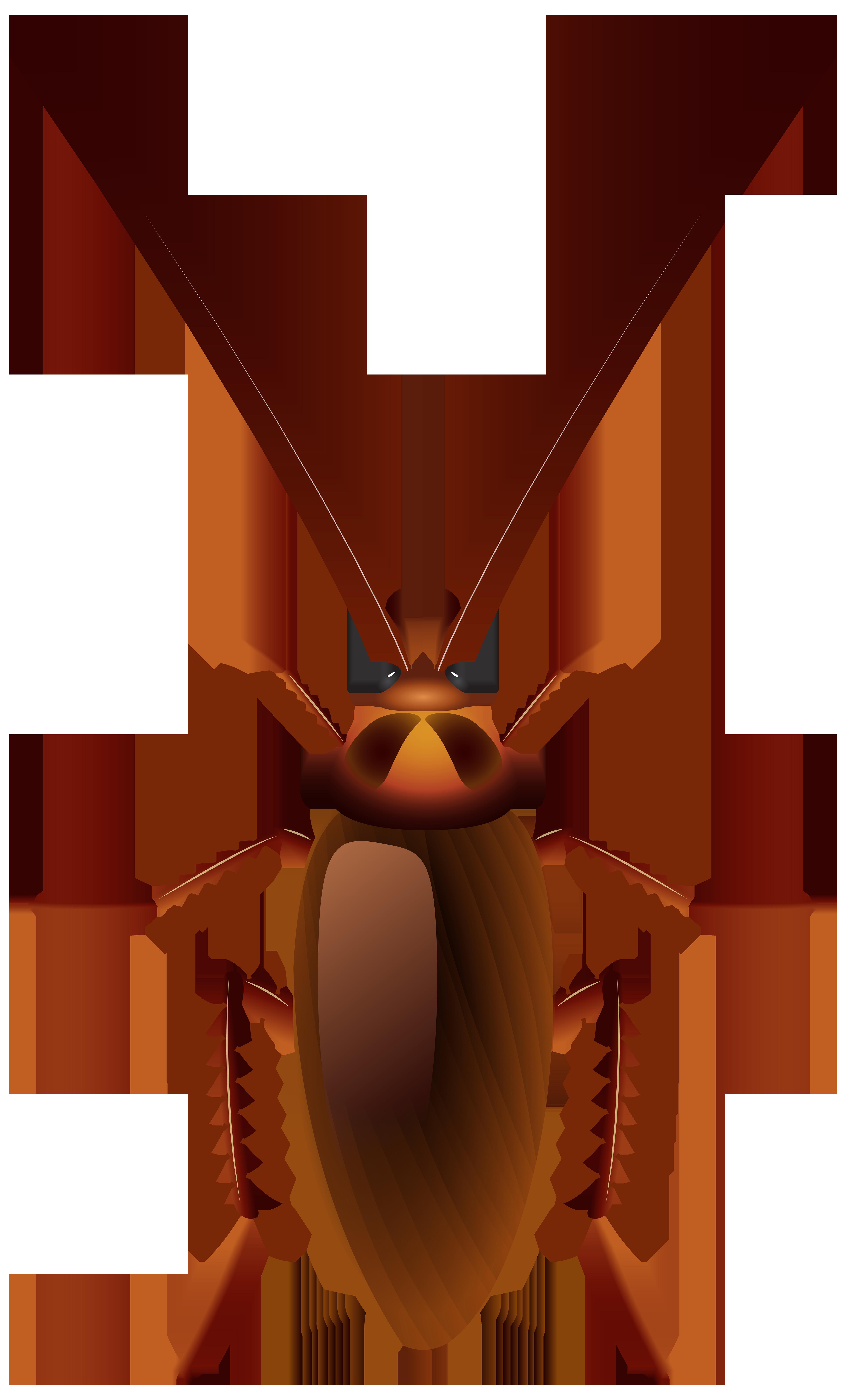 4839x8000 Top 82 Cockroach Clipart