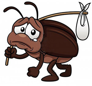 300x281 Bug Clipart Sad