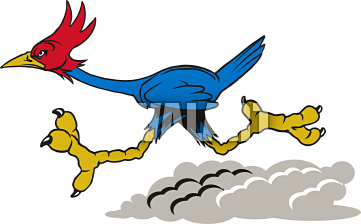 Roadrunner Bird Clipart | Free download on ClipArtMag