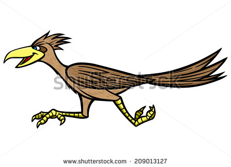 450x326 Roadrunner Clipart Bird