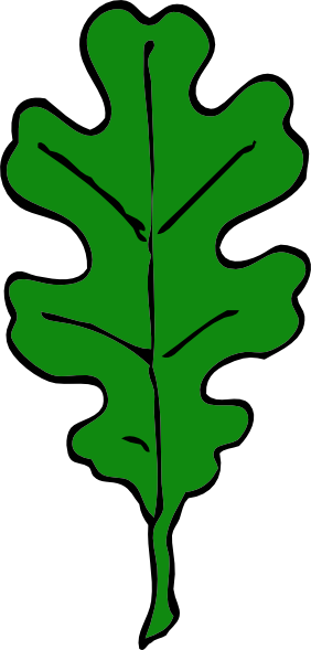 282x589 Green Oak Leaf Clip Art