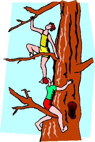321x478 Climbing Tree Clipart Rock Climbing