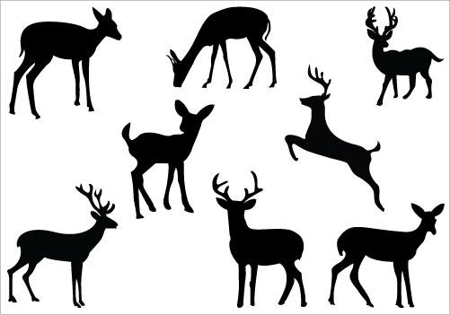 501x351 Baby Deer Silhouette
