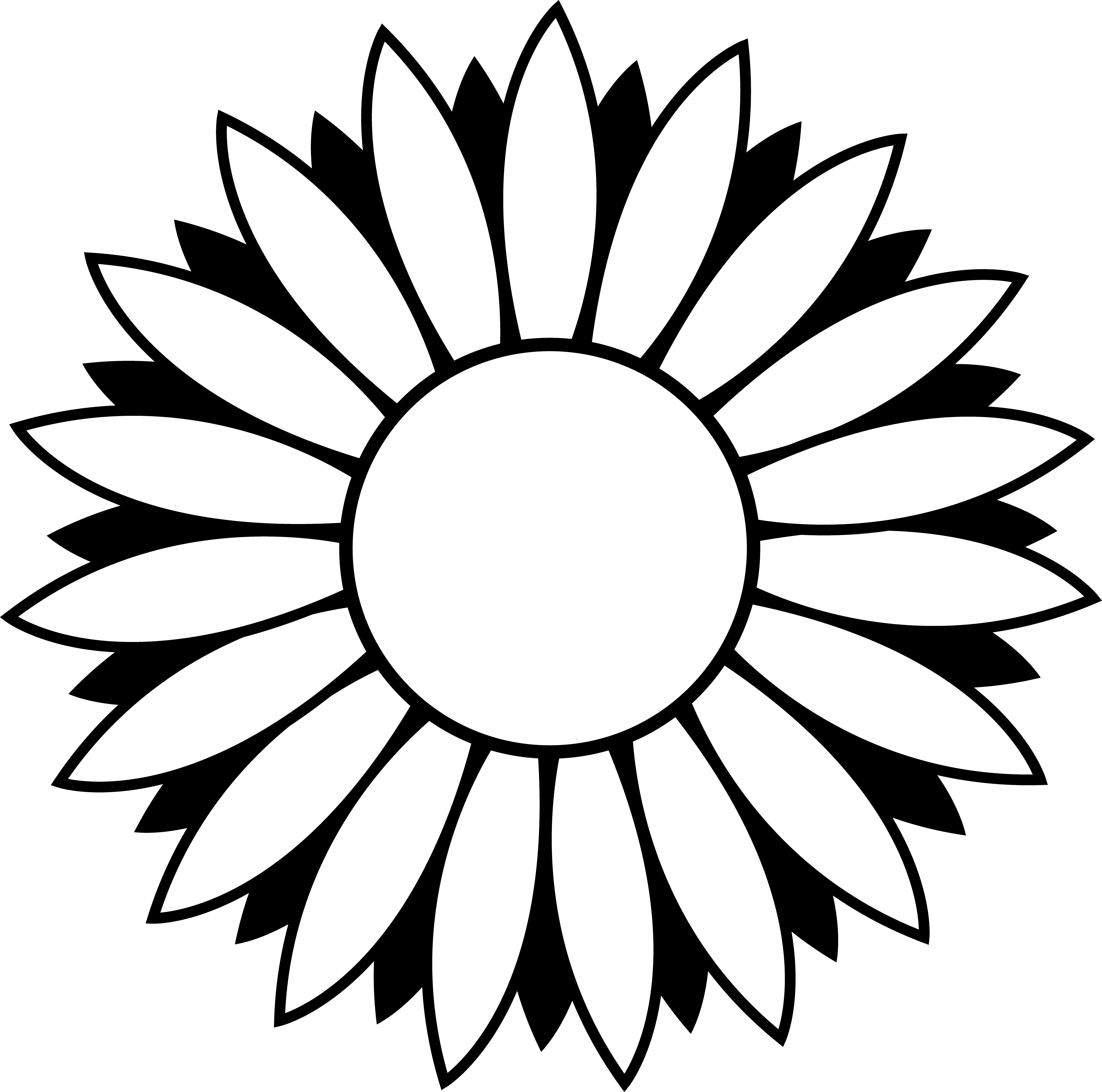 5137x5092 Sunflower Clipart Black And White