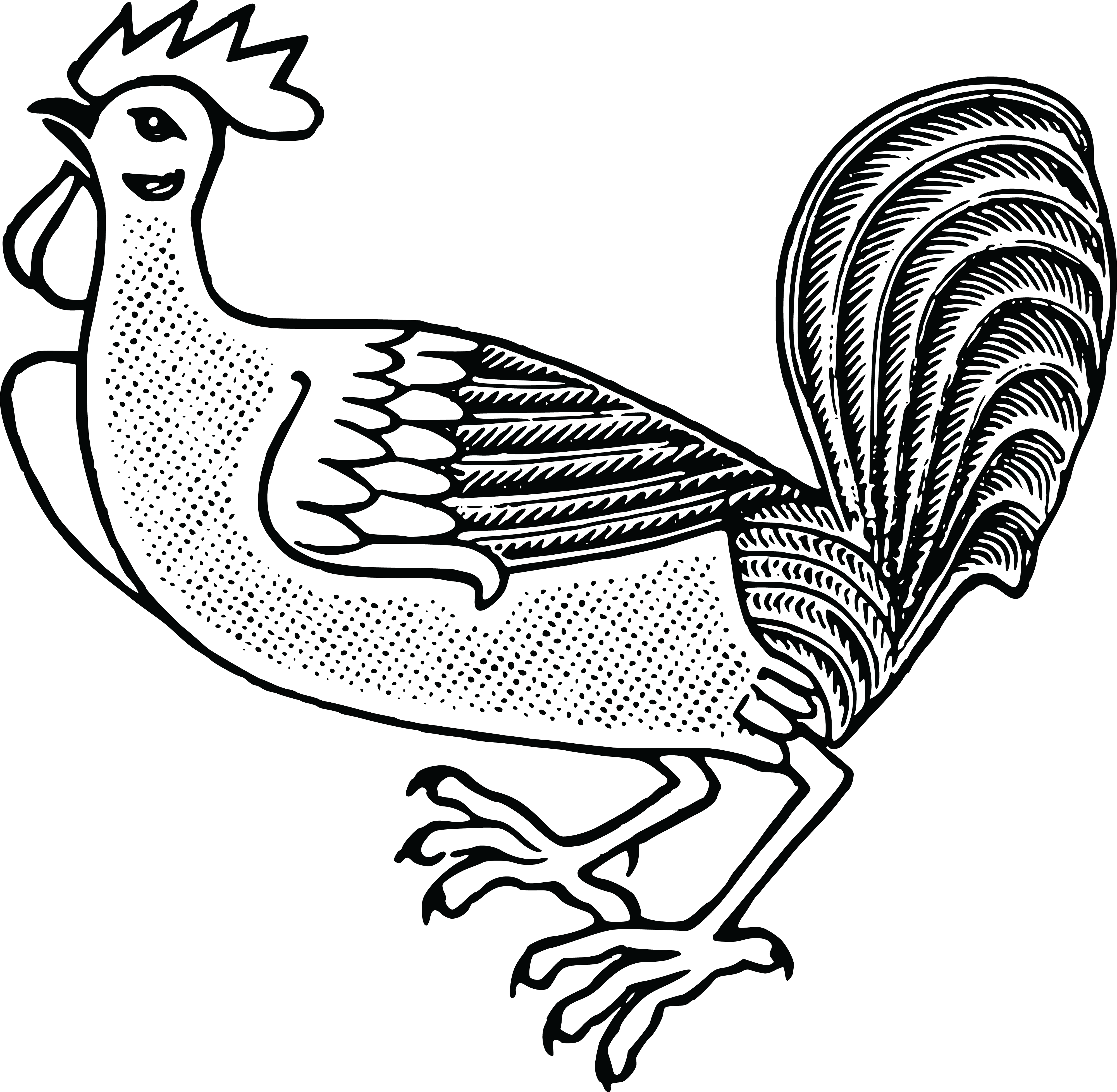 4000x3912 Free Clipart Of A Rooster