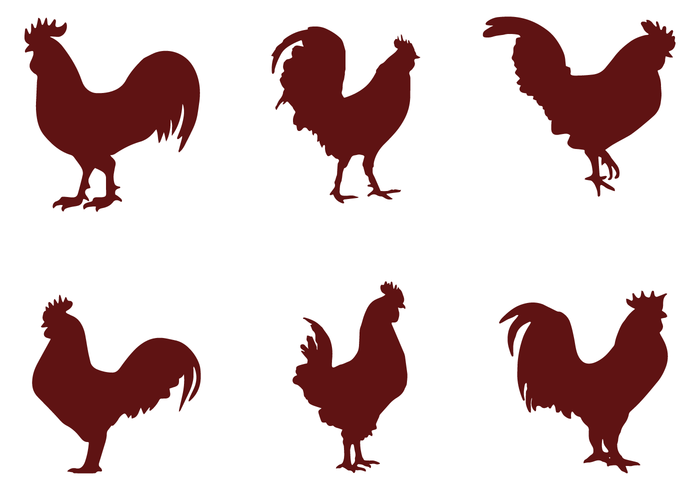 700x490 Rooster Silhouette Vectors