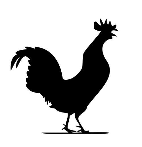 500x515 Why A Rooster Resurrection Church