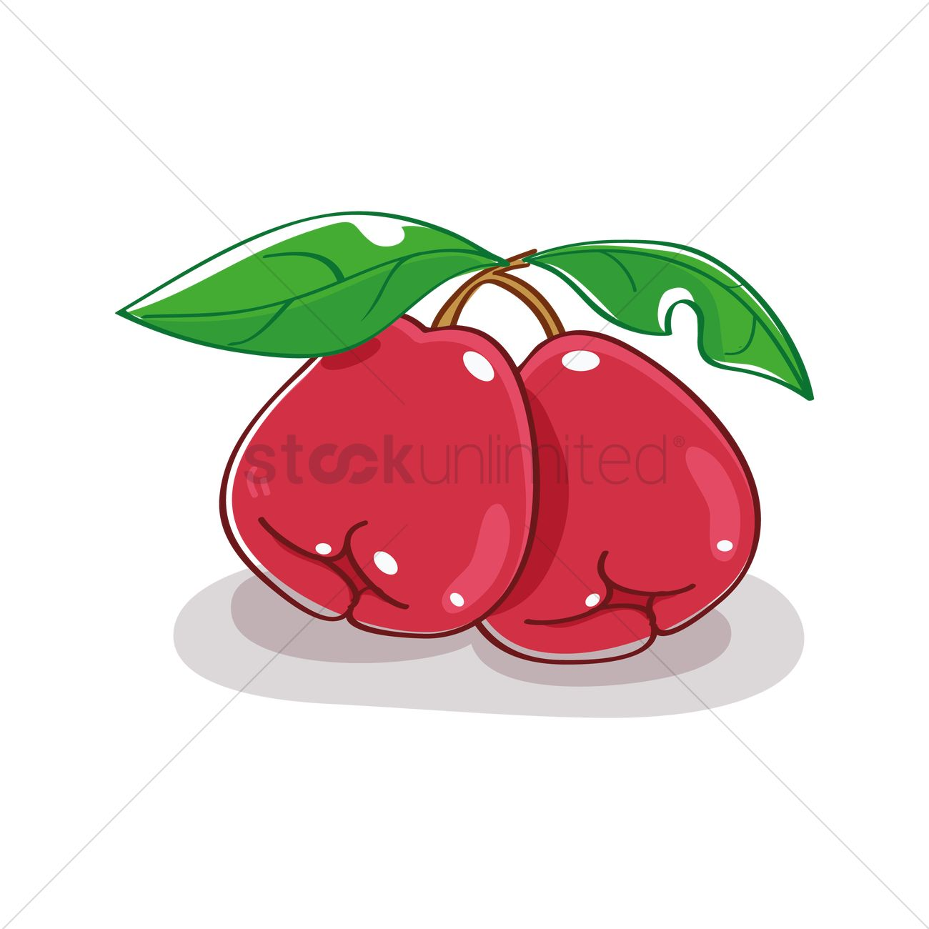 1300x1300 Free Rose Apple Vector Image