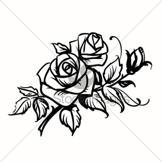 325x325 Abstract Black And White Rose In Outline Drawing Style. · GL Stock