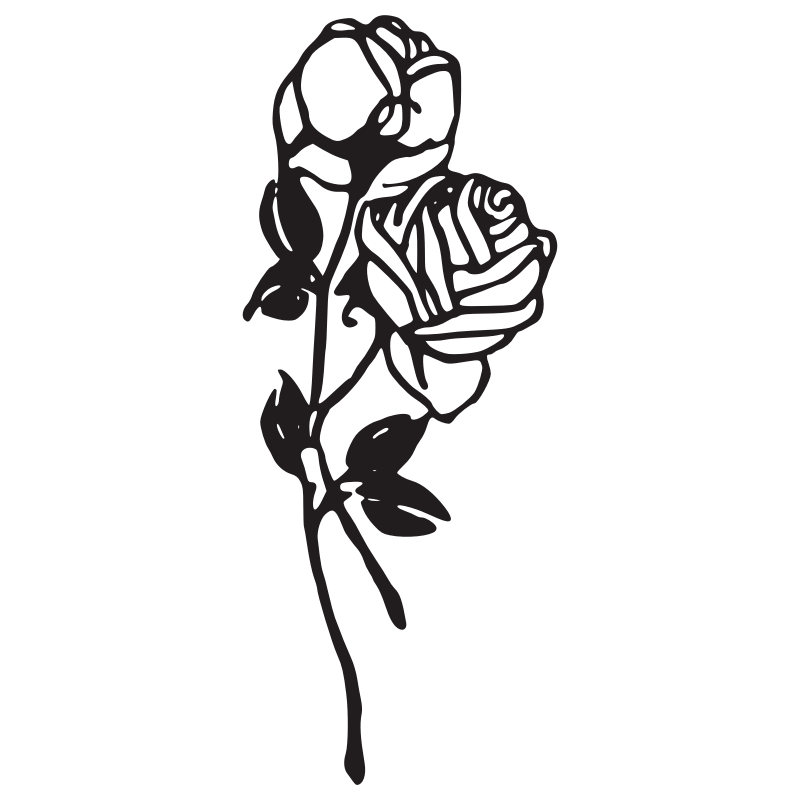 800x800 Vector and rose clipart black and white 0 favorite