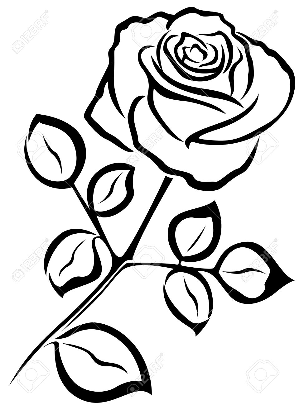 975x1300 Black Vector Outline Of Single Rose Flower Isolated On A White