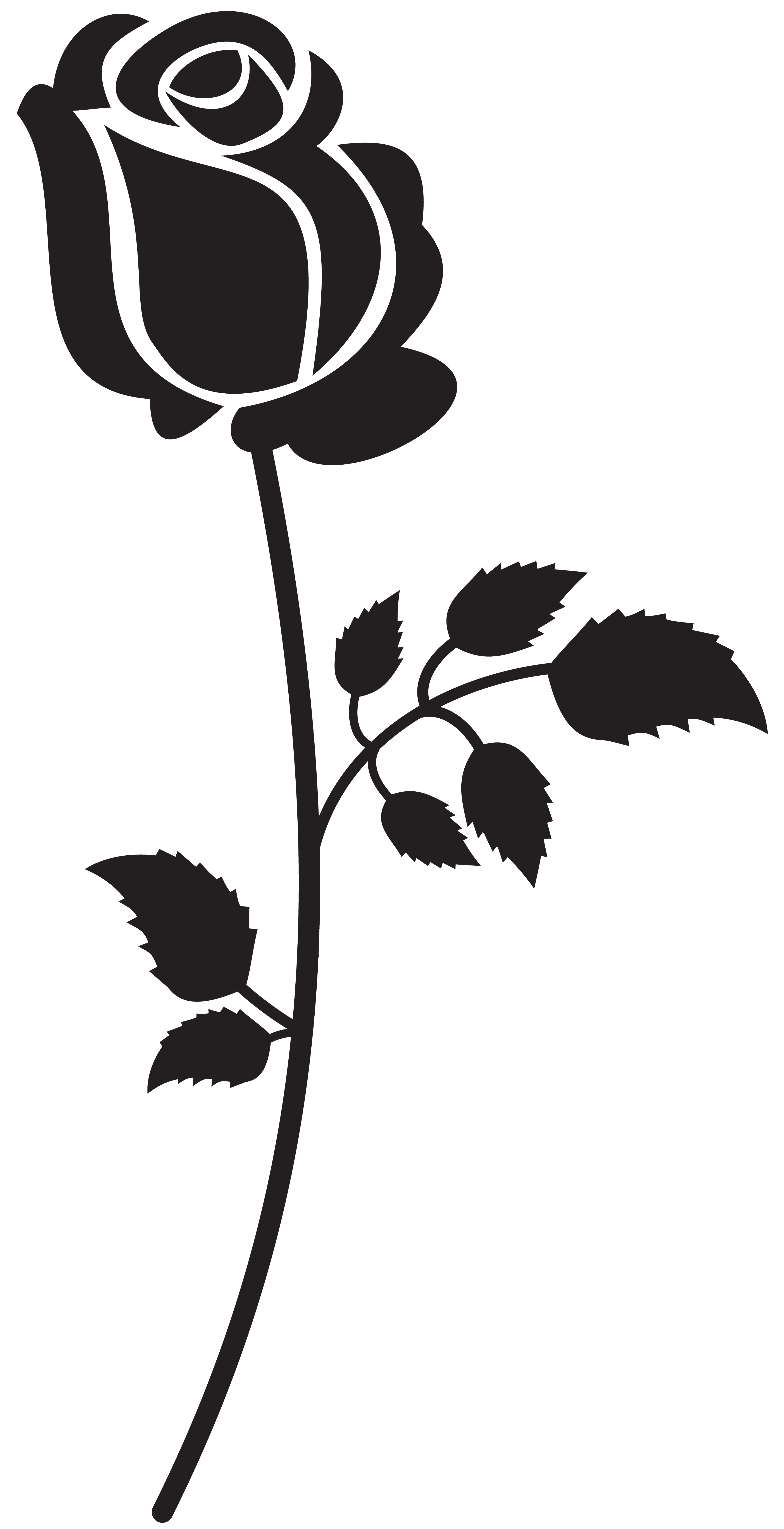 Rose Black And White Clipart | Free download on ClipArtMag